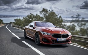 Picture coupe, overtaking, BMW, the fence, Coupe, 2018, 8-Series, dark orange, M850i xDrive, Eight, G15