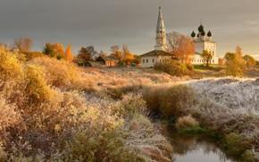 Picture frost, grass, landscape, nature, stream, village, Church, Maxim Evdokimov, Осенево