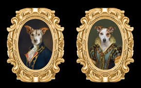 Picture dogs, frame, portrait, pictures, image, black background, the middle ages