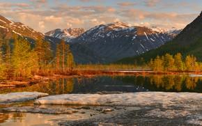 Picture snow, trees, landscape, mountains, nature, lake, vegetation, ice, Kolyma, Maxim Evdokimov, the lake of Jack …