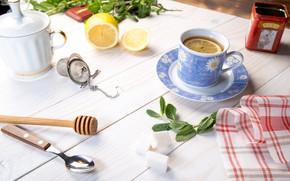 Picture table, lemon, mint, wood, cup, napkin, tea fragrant