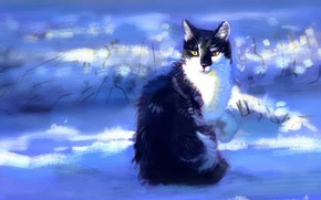 Picture winter, cat, snow, sitting, by Meorow