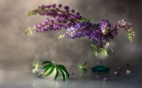 Picture flowers, glass, bouquet, lilac, lupins