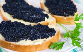 Picture macro, sandwich, black caviar