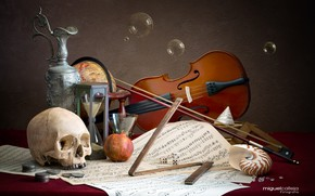 Picture notes, bubbles, violin, skull, coins, pitcher, still life, globe, hourglass, garnet
