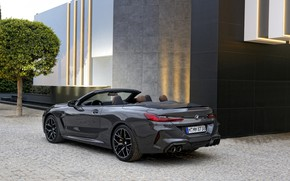 Picture wall, the building, BMW, convertible, 2019, BMW M8, M8, F91, M8 Competition Convertible, M8 Convertible