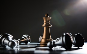 Picture chess, victory, king