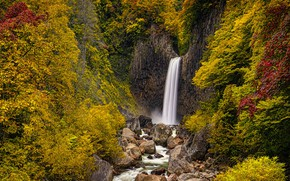 Picture autumn, trees, foliage, waterfall, the bushes