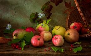 Picture leaves, apples, still life, basket