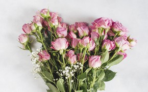 Picture flowers, roses, bouquet, Pink, Rose, beautiful, bouquet