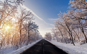 Picture winter, road, morning