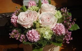Picture roses, bouquet, hydrangea