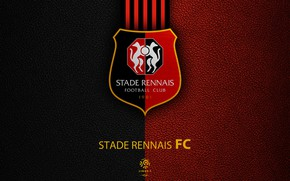 Picture wallpaper, sport, logo, football, Ligue 1, Tennis Stadium