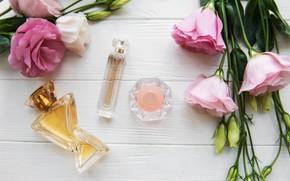 Picture bouquet, perfume, bottles, customa, Olena Rudo