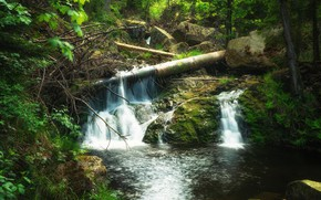 Picture forest, water, nature, stones, waterfall, windbreak