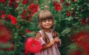Picture flowers, nature, smile, thickets, dress, girl, braids, child, mallow