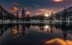 Picture winter, forest, the sky, sunset, mountains, birds, lake, reflection, Friedrich Beren