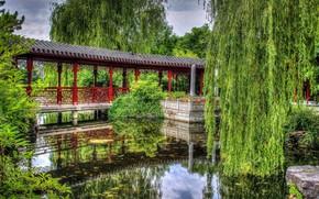 Picture trees, bridge, Park, river, IVA, willow
