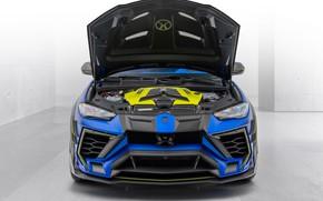 Picture Lamborghini, Mansory, 2020, urus, Lamborghini Urus Venatus