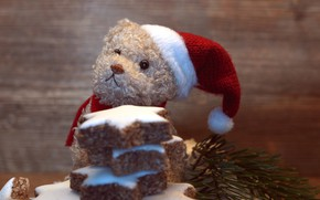 Picture winter, branches, holiday, toy, Board, bear, cookies, Christmas, bear, New year, needles, plush, stars, Teddy, …