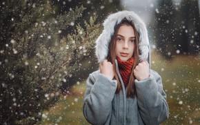 Picture snow, portrait, hood, girl, fur, Giorgi Solomnishvili