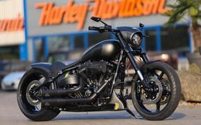Picture Harley Davidson, Harley-Davidson, Custom, Softail, Motorbike, Thunderbike, By Thunderbike, Black Sky