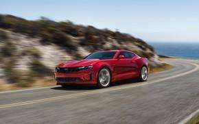 Picture Chevrolet, Camaro, 2020, LT1