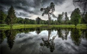 Picture trees, clouds, lake, reflection