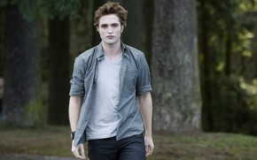 Picture shirt, Twilight, Edward Cullen, The Twilight