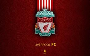 Picture wallpaper, sport, logo, football, Liverpool, English Premier League