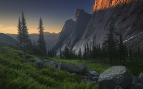 Wallpaper forest, summer, light, mountains, stones, rocks, tops, the evening, slope, fern, boulders