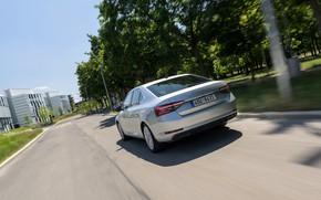 Picture movement, street, sedan, Skoda, Skoda, four-door, Superb, 2020, gray-silver