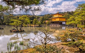 Picture trees, lake, Park, castle, shore, Japan, Kyoto, Islands