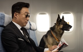 Picture dog, glasses, newspaper, male, on the plane, Mr. Zoo The Missing VIP