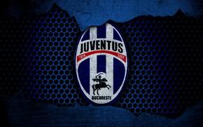 Picture wallpaper, sport, logo, football, Juventus Bucuresti