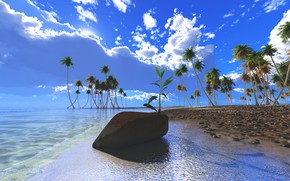 Picture beach, the sky, palm trees, the ocean