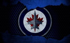 Picture wallpaper, sport, logo, NHL, hockey, Winnipeg Jets
