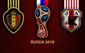 Picture wallpaper, sport, logo, football, FIFA World Cup, Russia 2018, Belgium vs. Japan