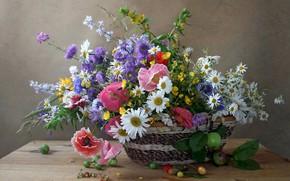 Wallpaper summer, Mac, chamomile, bouquet