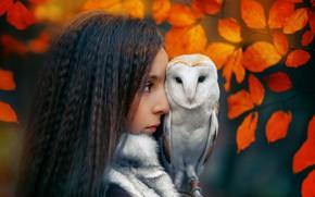Picture autumn, leaves, girl, owl, bird, brunette, profile, Janusz Żołnierczyk
