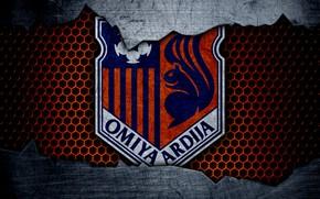 Picture wallpaper, sport, logo, football, Omiya Ardija