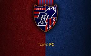 Picture wallpaper, sport, Tokyo, logo, football