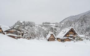 Picture winter, snow, trees, landscape, winter, house, hut, landscape, nature, beautiful, winter, snow, cottage