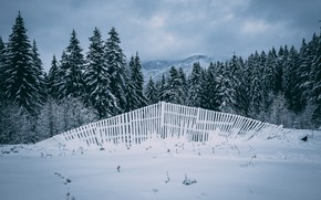 Picture winter, field, forest, the sky, clouds, snow, mountains, the fence, ate, the fence, the snow, …