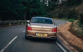 Picture asphalt, Bentley, rear view, Flying Spur, 2020, V8, 2021, Flying Spur V8
