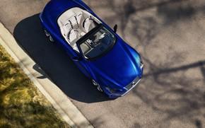 Picture asphalt, shadow, Lexus, top, convertible, 2021, LC 500 Convertible