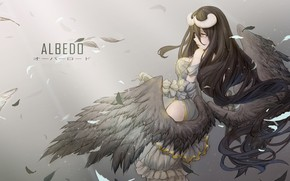 Picture girl, the demon, Overlord, The Lord, Albedo