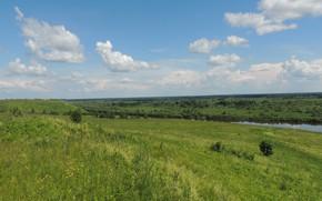Picture summer, Landscape, selni