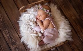 Picture toy, Board, sleep, rabbit, girl, wreath, baby, cot, sleeping