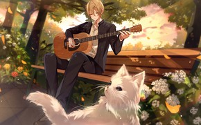 Picture guitar, guy, plays, in the Park, white cat, garden flowers, on the bench